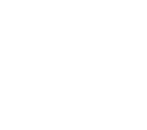 ferry-large